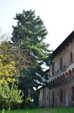 mirabello pavia castle of mirabello pavia italien omd 246 tripadvisor
