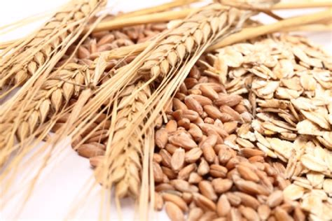 whole grains digestion nutritious and delicious foods to keep your healthy