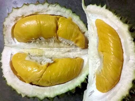 alibaba durian durian is the most searched word on alibaba com says