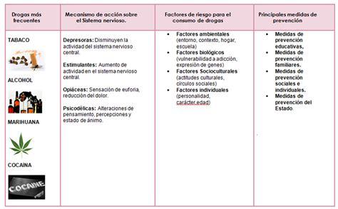 motivaci 211 n e innovaci 211 n docente principales verdades a neurociencias biopsicolog 205 a de