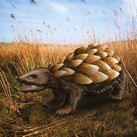 new year animals future grassland rattleback speculative evolution wiki fandom