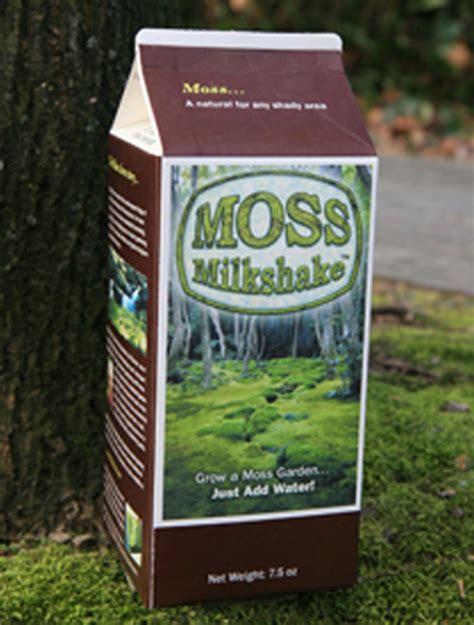 bonsai tree grow your own moss