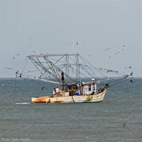 best fishing boat for galveston bay 36 best images about gulf coast on pinterest fishing