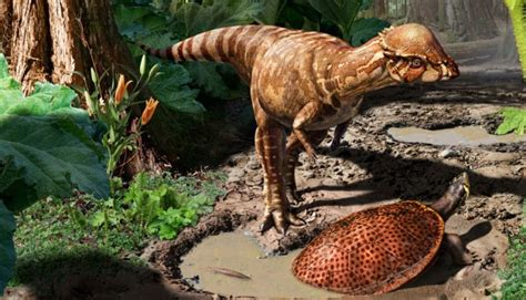 film dinosaurus air air minum kita mungkin urine dinosaurus ini penjelasannya