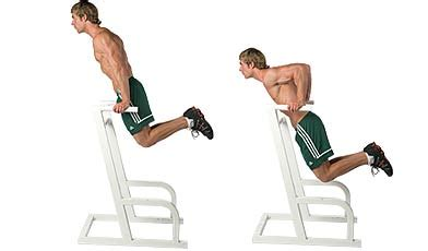 bench dips chest ultieme borst training krachttraining net