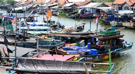 Minyak Ikan Di Apotik Jogja bbm nelayan ini penyebab nelayan tak dapat beli bahan