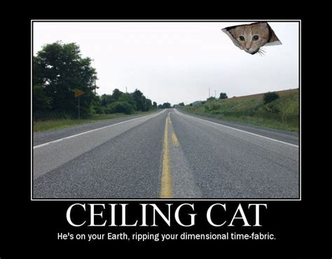 Ceiling Cat Meme - image 8046 ceiling cat know your meme