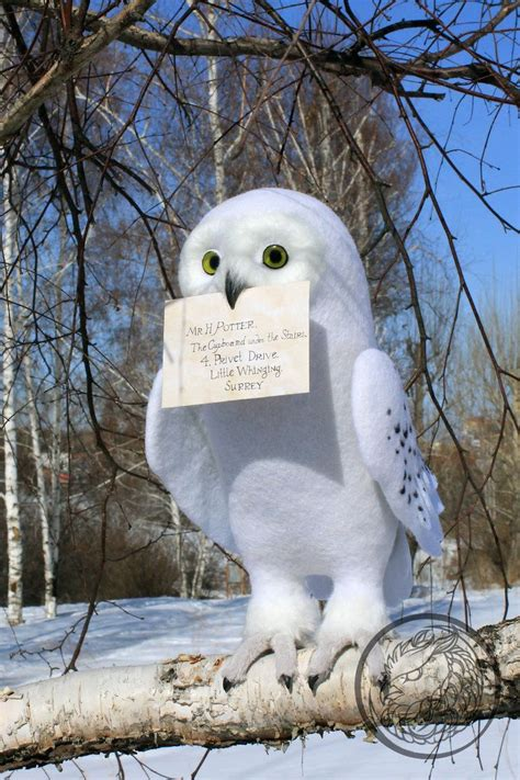 Snowy Owl Hedwig Papercraft By - 1000 ideas about hedwig owl on white owls