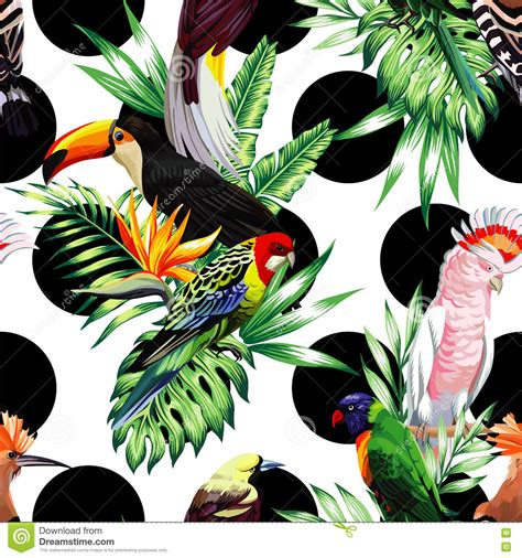 Asos10524 Floral Bird Tropical Blue White S M Import Chiffon Dress tropical birds and palm leaves pattern black rounds background stock vector image 75365682