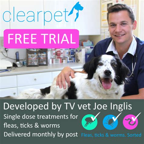 flea tick and worm treatment for dogs uk free trial clearpet cat fleas ticks worms treatment