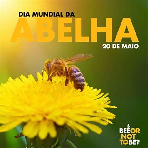 Blogapi: 20 de maio - Dia Mundial das Abelhas (World Bee Day)