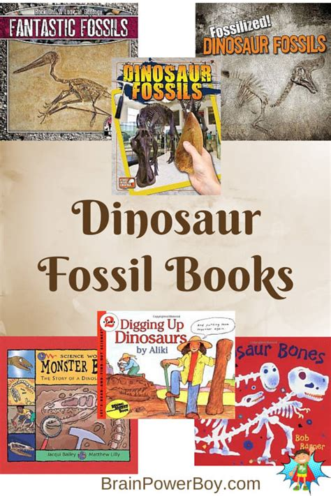 fossil by fossil comparing dinosaur bones books best books for boys dig into dinosaur fossil books