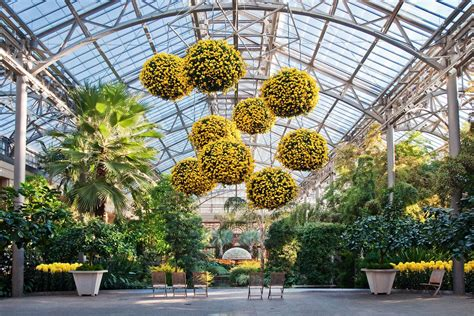 Botanic Garden Concert 13 Festivals At Botanic Gardens 2018