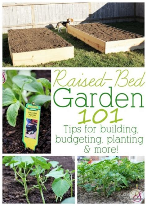 raised bed gardening a diy guide to raised bed gardening books raised bed garden 101 tips for building budgeting
