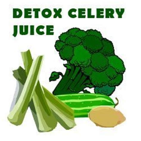 Celery Detox Benefits by The Celery Juice Benefits And Side Effects