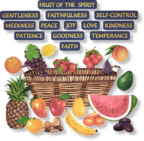 7 fruits of the holy spirit and their meanings virtues gifts and fruits box of chocolates