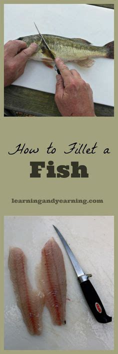 how to find out what my boat is worth my fishing buddies chilling out fishing boats and