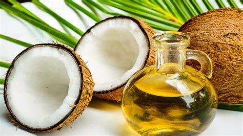 Daftar Minyak Zaitun Di Indo 12 jenis makanan yang dapat tingkatkan kekuatan dan memori