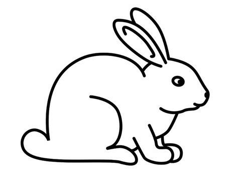 wallpaper hewan hitam putih download gambar sketsa hitam putih mewarnai hewan kelinci