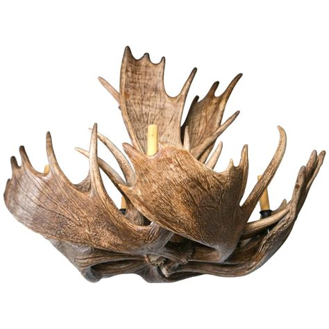 Moose Antler Chandelier Fantastic Eight Light Moose Antler Chandelier For Sale At 1stdibs