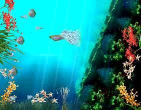 Computer Desktop Animated Wallpaper Wallpapers Shop Animated Wallpapers Animated Pictures Free Animation Photo