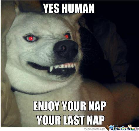 Demon Memes - demon dog by partyparty meme center