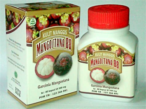 Ace Max Jogja kulit manggis toko herbal lugada herbal