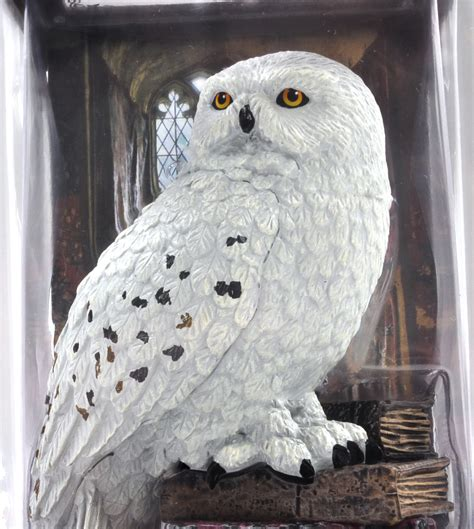 Bar Home Decor by Hedwig Harry Potter Magical Creatures By Noble