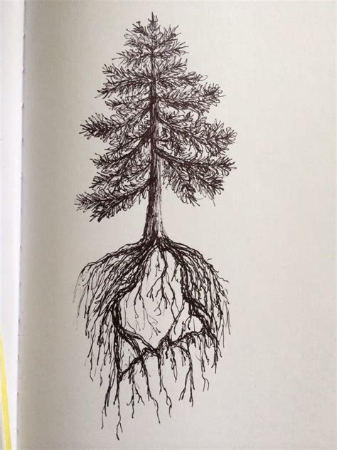 tree roots tattoo designs pine tree state design by ramble inthe roots on