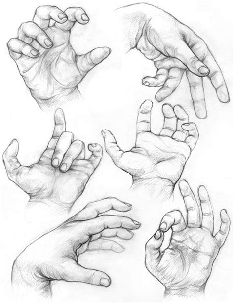 Inspect Sketches B And D by 169 Best Images About Drawing Reference Arms On