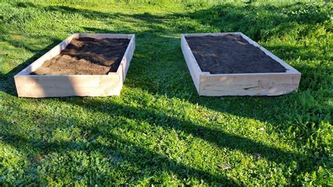 how to start a raised bed garden in your backyard back to the basics build your own raised bed garden