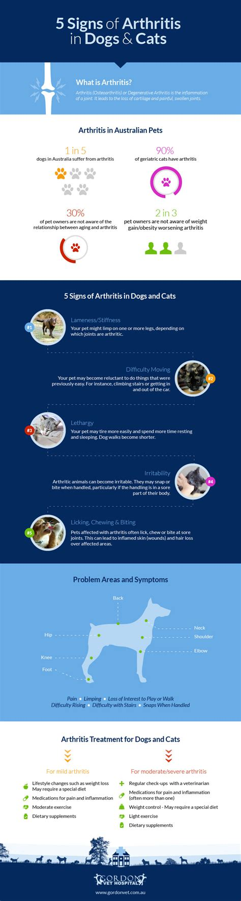signs of arthritis in dogs 5 signs of arthritis in dogs and cats infographic petlvr archives