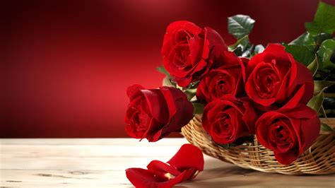 wallpaper roses   wallpaper flower bouquet red