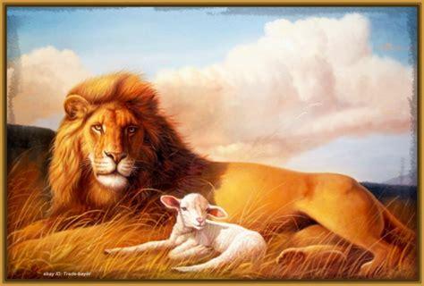 imagenes con leones im 225 genes de leones con frases de amor archivos imagenes