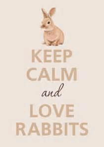 keep calm rabbits keep calm and