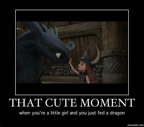 Toothless Meme - 89 best images about how to train your dragon on pinterest