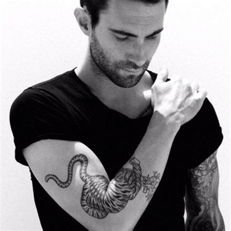 adam levine tiger tattoo adam levine tiger oohh yah classic ink