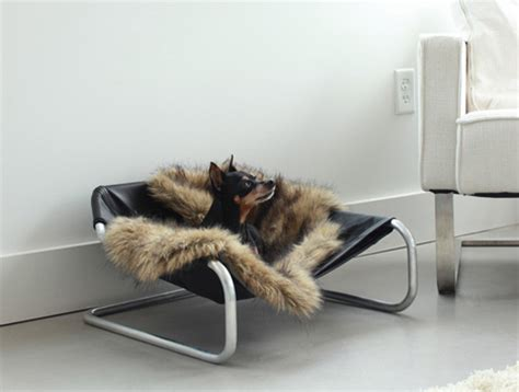 pered pets furniture for discerning dogs cats