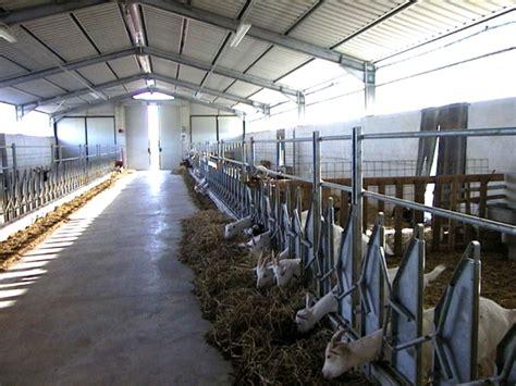 what makes a suitable goat housing farmcradle