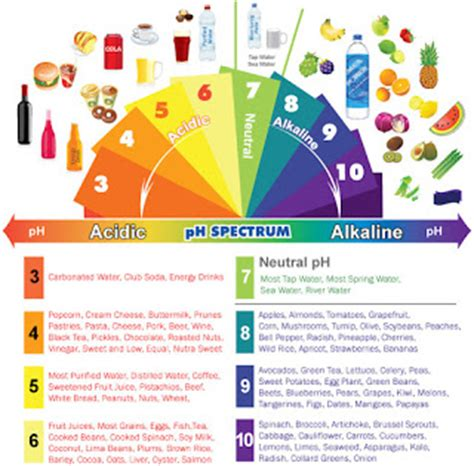 proper ph balance is critical for good health bikram yoga retreat what does it mean to be alkaline