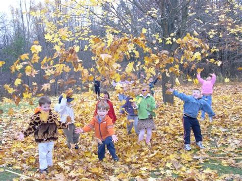 kindergarten activities nature 81 best fall preschool activities images on pinterest