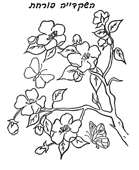 tu b shvat coloring pages tu b shvat coloring pages tu b
