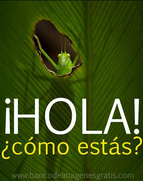 Imagenes De Hola Como Estas Quotes | idool 161 hola 191 c 243 mo est 225 s im 225 genes gratis para facebook