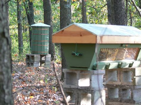 top bar hives in cold climates 17 best images about top bar beekeeping on pinterest