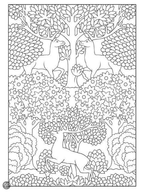 nouveau coloring book bol creative nouveau animal designs