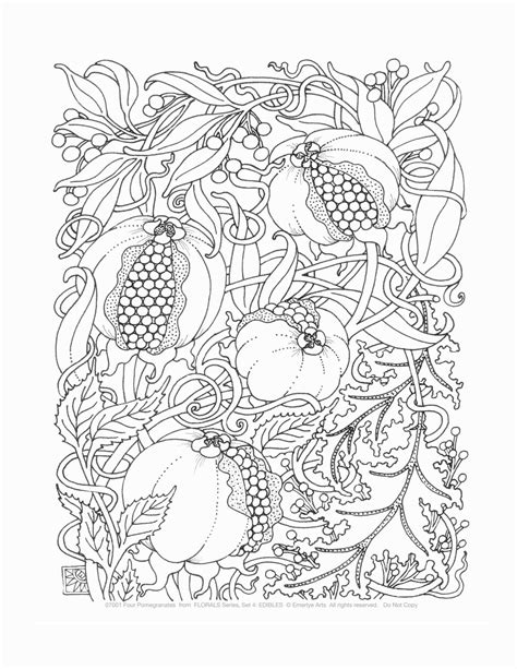 the coloring pages for adults simple coloring book that