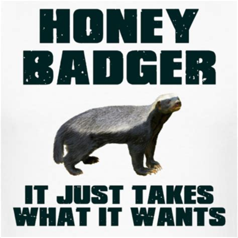 Honey Badger Don T Care Meme - image 140324 honey badger know your meme