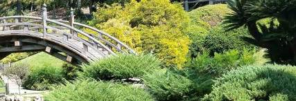 giardino feng shui giardino feng shui design e riflessione giardini cesare
