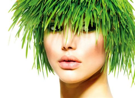 hair colour u can use during chemo vegetable hair dye safe best brands for eyebrows