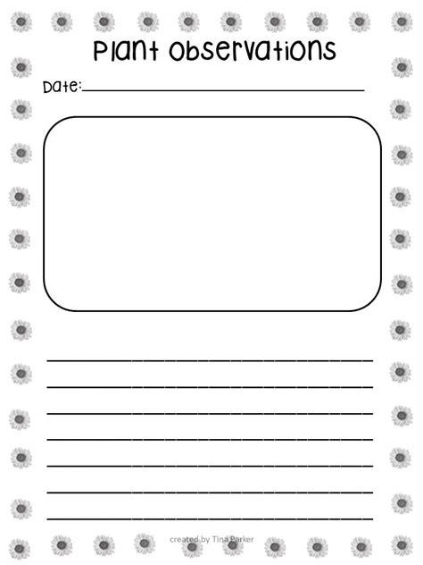 printable plant observation journal following first grade with mrs parker spring has finally